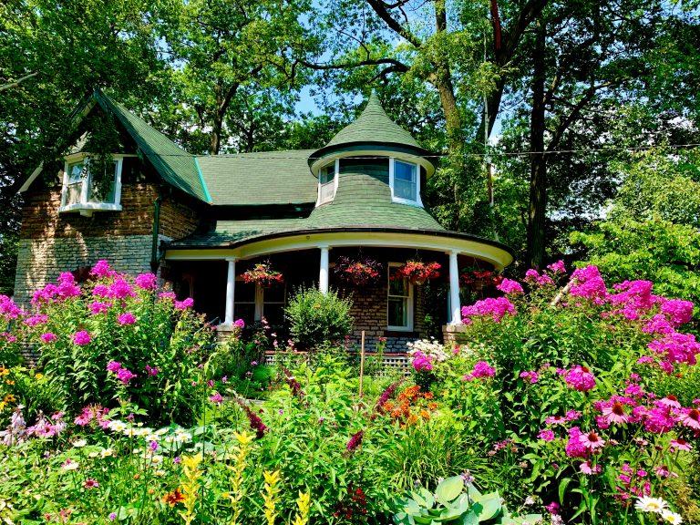 O grădină mai frumoasă și mai sănătoasă cu bioactivatorii Eparcyl